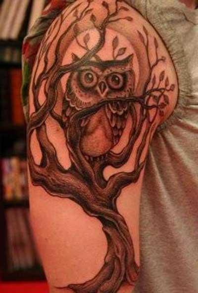 desenhos de tatuagens de coruja
