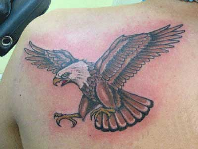 Desenhos de tatuagens de águia