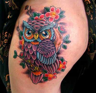 coruja colorida