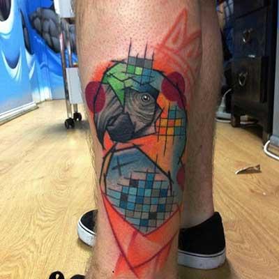 Dicas de Tatuagens de Papagaio