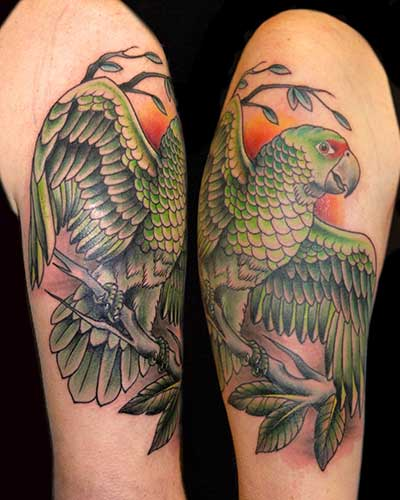 Fotos de Tatuagens de Papagaio