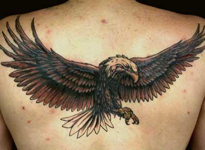 Fotos de Tatuagens de Águia