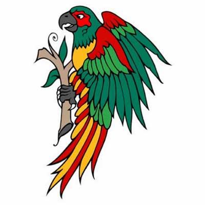 papagaios ára tatuar