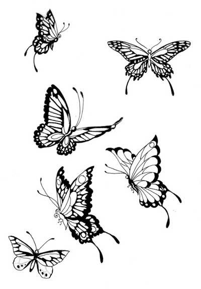 diversas espécies