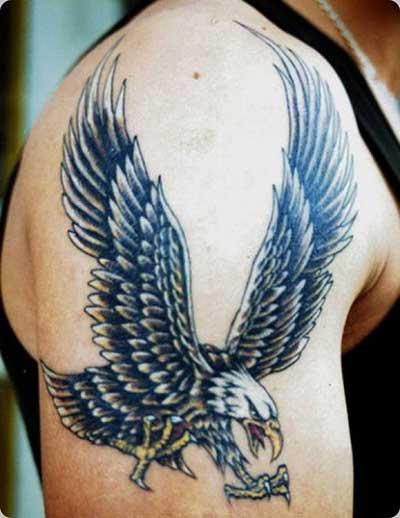 Imagens de Tatuagens de Águia