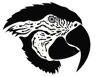 40 Tatuagens De Pássaros Significados Desenhos Fotos