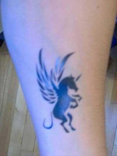 cavalo com asas