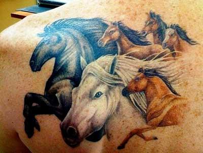 dicas de tatuagens de cavalo
