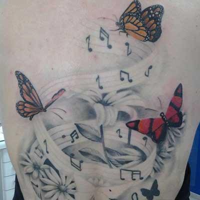 com borboletas