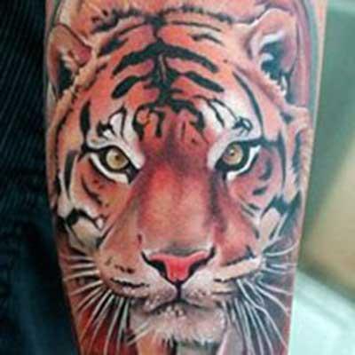 tatuagem de tigre