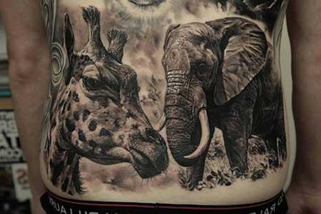 elefante e girafa