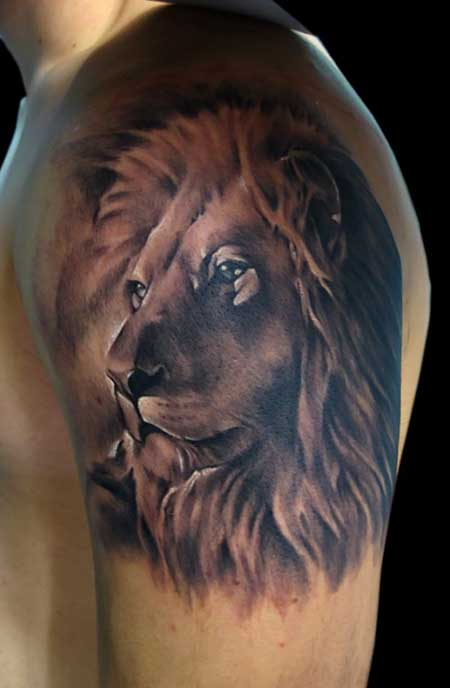 imagens de tatuagens de leões