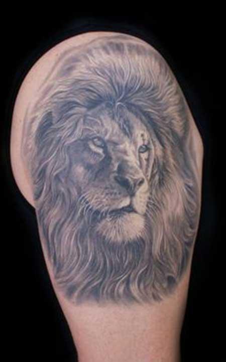 tatuagens de leão
