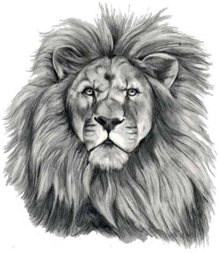 45 fotos de tatuagens de leões imagens e desenhos