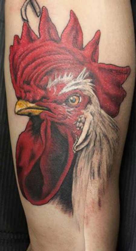 fotos de tatuagens de galo