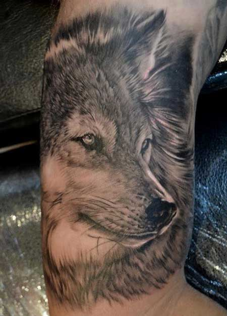 modelo de tatuagem de lobo
