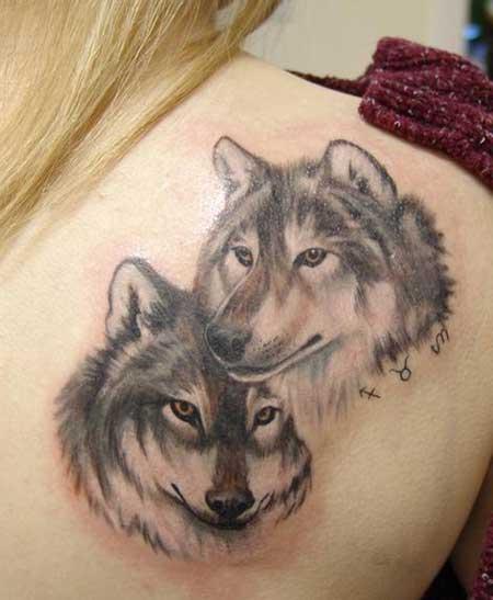 fotos de lobos