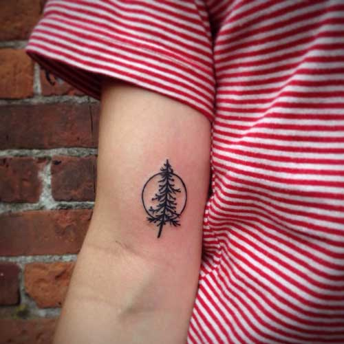 tattoo de árvores secas