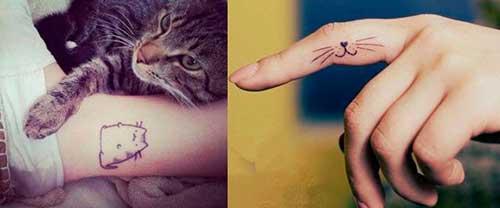 gatinhos tatuados