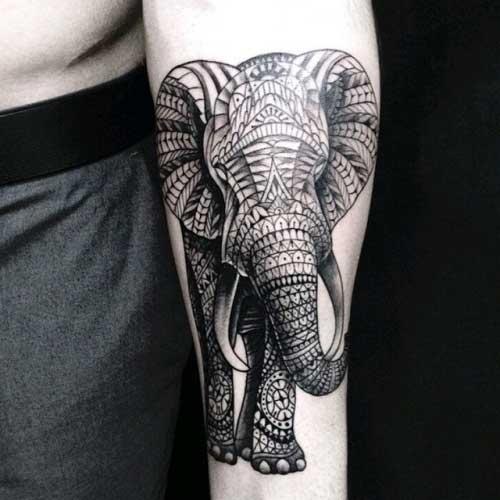 desenhos de elefante