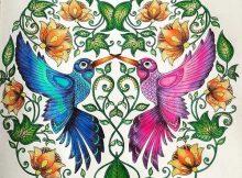 Tatuagens de Beija Flor