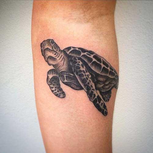 25 Fotos De Tatuagens De Tartarugas Masculinas E Femininas